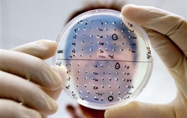 Novartis: gli aggiornamenti di Aifa ed Ema sui vaccini antifluenzali