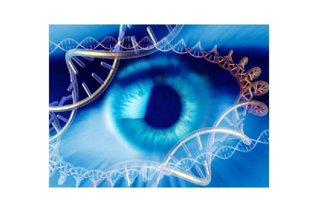Oftalmologia: Boehringer Ingelheim investe in Eyevensys per terapie geniche