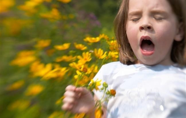 In Italia 25% bimbi con allergie, esperti sdoganano uso probiotici
