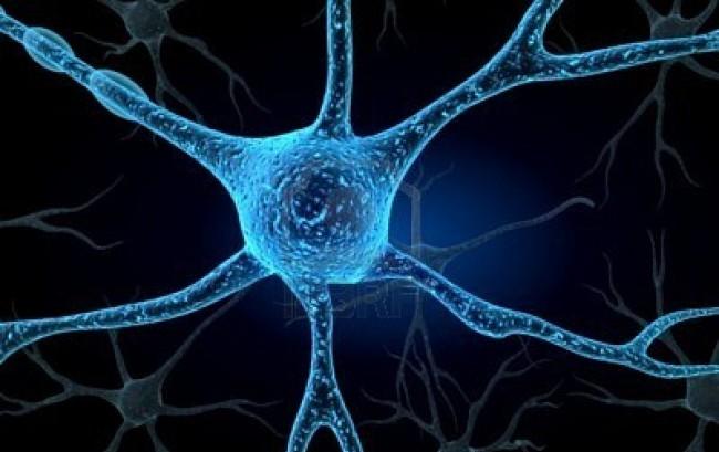 Primi dati di efficacia di Anti-Lingo 1 nel trattamento della neurite ottica