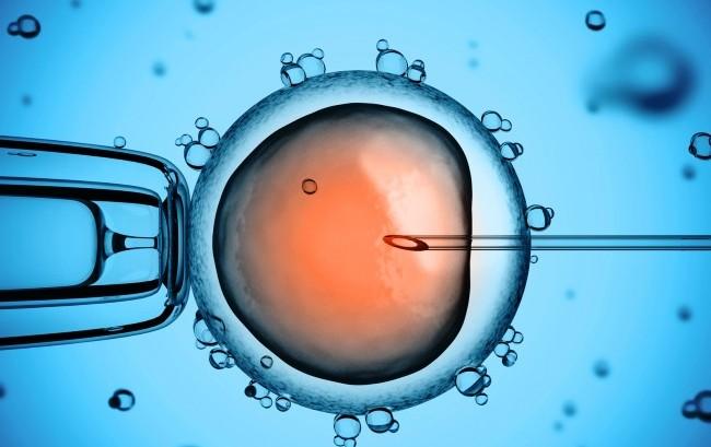 Sempre più mature e istruite le coppie che ricorrono alla procreazione assistita