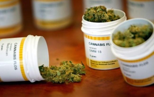 Via libera del Piemonte alla cannabis terapeutica