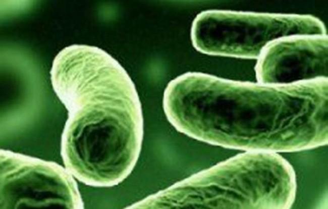Infezioni e antibioticoresistenza sotto la lente a Oxy.gen