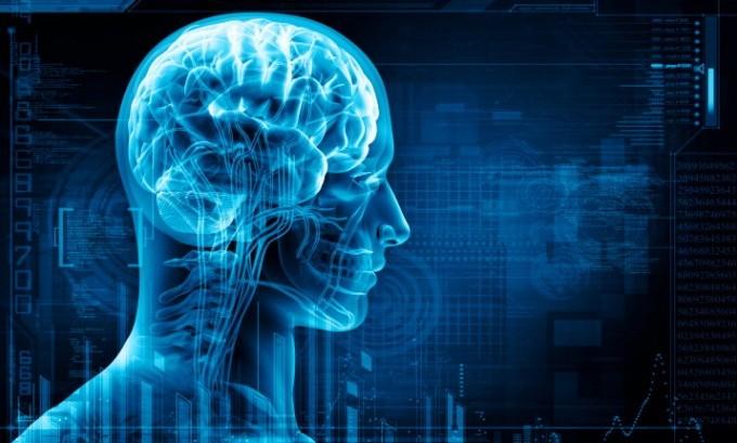 La Società italiana di neurologia premia ricerca sul dolore neuropatico localizzato