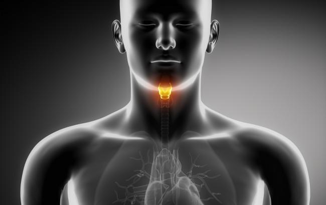 Ipoparatiroidismo, una campagna per far conoscere una malattia poco nota