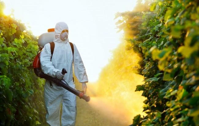 Commissione Ue mette al bando nuovi pesticidi, a giorni i provvedimenti in Gazzetta