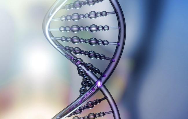 Identificati i geni responsabili dell'Alzheimer