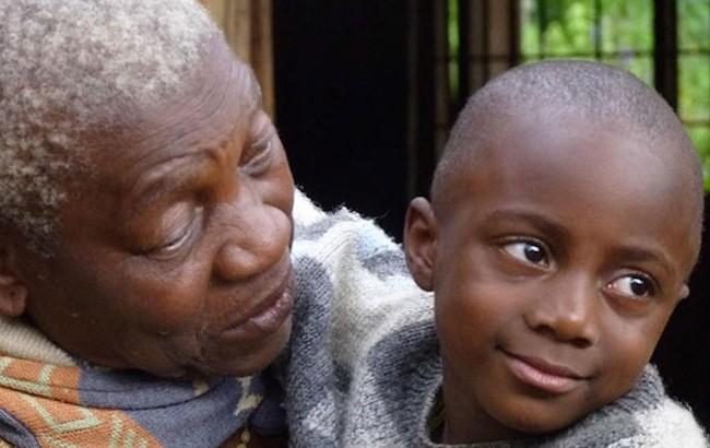 A breve un manuale per la leishmaniosi, una malattia non solo tropicale