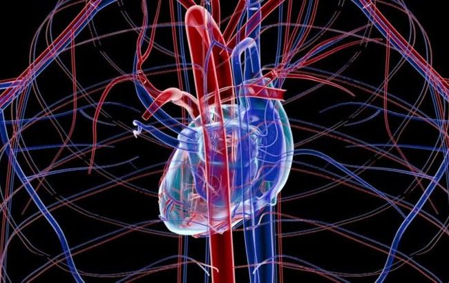 Lotta alle malattie coronariche con il 3D, al via a Pisa il progetto europeo SMARTool
