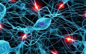 neuromielite ottica