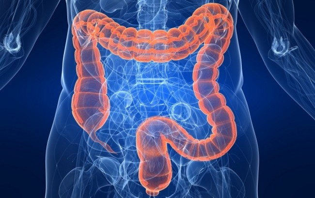 A Chieti centro di eccellenza Ue nell'analisi precoce del tumore del colon-retto