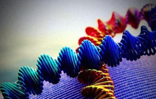 Fda, nuove linee guida sulle terapie geniche
