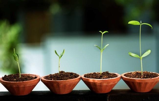 Caccia a nuove start-up da finanziare nel campo delle life science