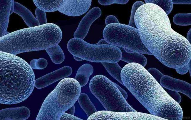 """Contro i """"superbatteri resistenti"""", più appropriatezza e incentivi alla ricerca"""