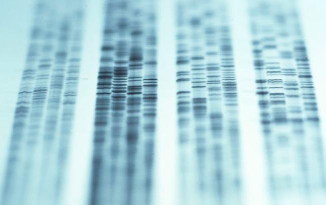 """Approvata la prima terapia genica ex-vivo per i """"bimbi in bolla"""""""