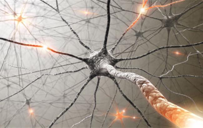 Sclerosi multipla, nasce alleanza internazionale per terapie personalizzate