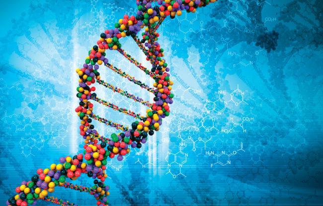 Scovati i possibili geni mutanti all'origine del sarcoma