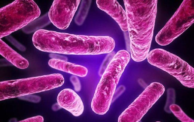 Sepsi, Assobiomedica: contro le infezioni ospedaliere servono modelli di prevenzione e innovazioni tecnologiche