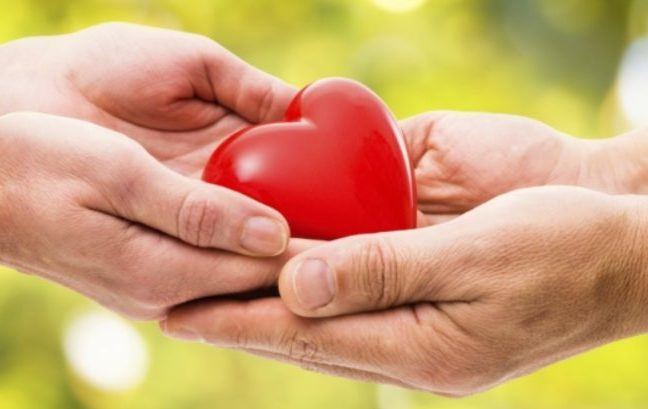 Donazione cellule e tessuti, consiglio dei ministri recepisce direttiva Ue per la tracciabilità