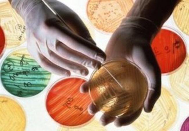 Svelato un nuovo meccanismo di resistenza agli antibiotici