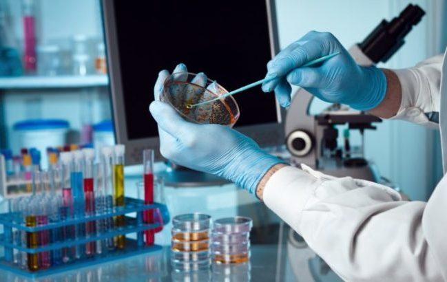 Antibioticoresistenza: 2000 casi di batteriemie l'anno