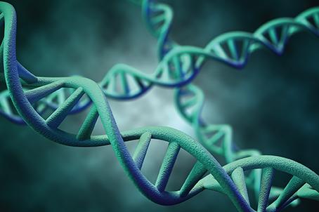 Ricerca, al via una collaborazione tra Genentech e Lodo Therapeutics