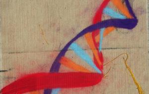 terapia genica contro la beta talassemia