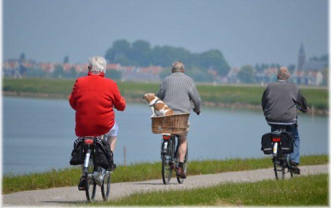 Invecchiamento, nel 2030 in Italia cinque milioni di anziani con disabilità