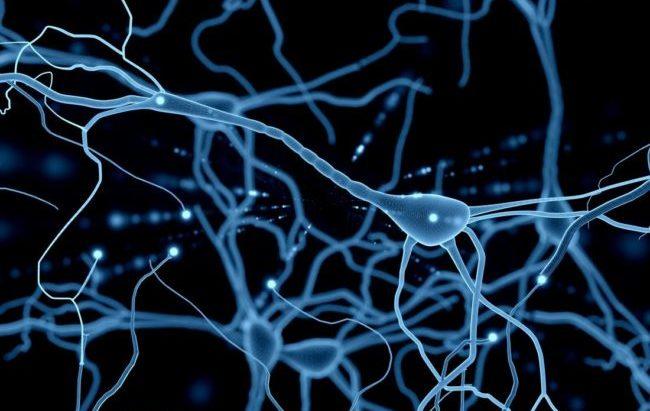 Tumori cervello, una mappa molecolare per conoscere (e combattere) i gliomi