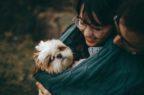 Farmaci veterinari: nel 2018 dieci approvazioni dall'Ema
