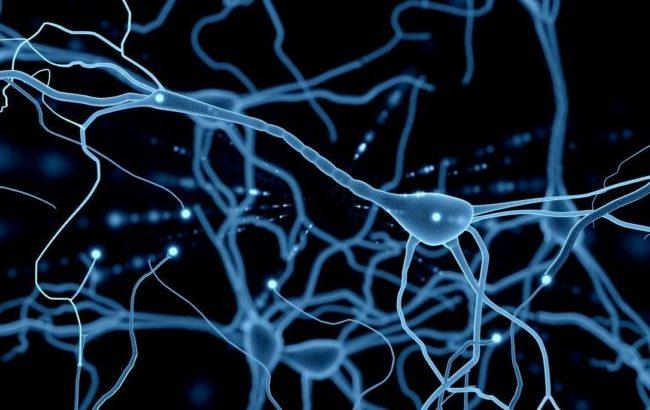 Usa, via libera a nuovo farmaco per le forme recidivanti di sclerosi multipla