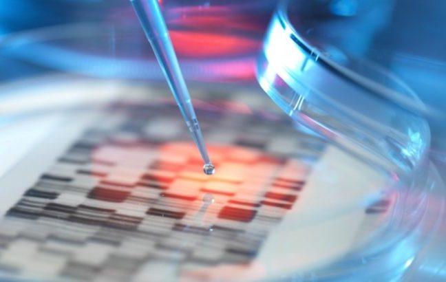 Editing genetico su gameti ed embrioni umani, c'è chi chiede lo stop