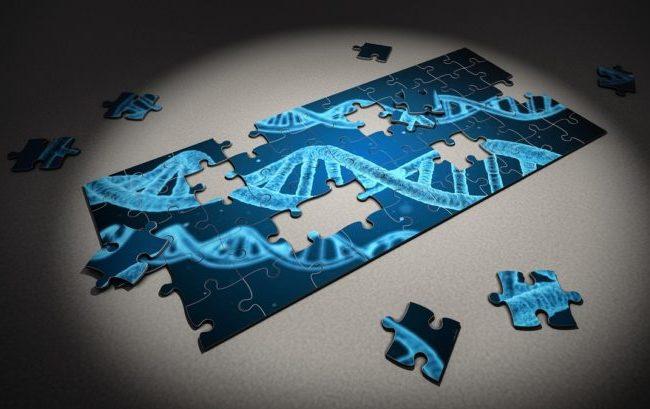 """Malattie genetiche rare: Ptc Therapeutics """"premia"""" due progetti italiani"""