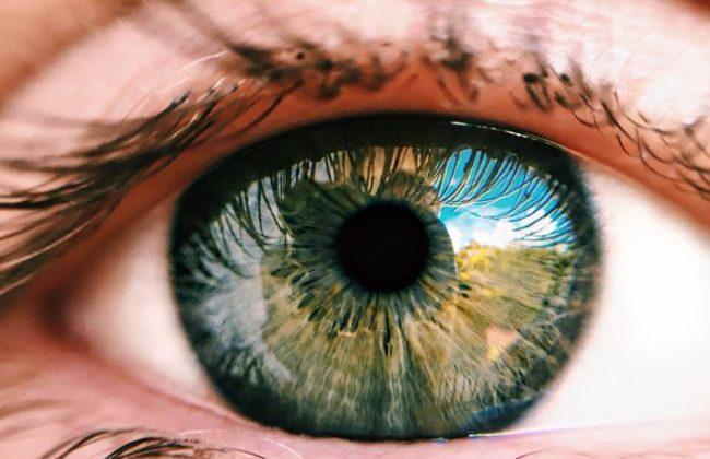 FB Vision e Bausch+Lomb: partnership internazionale per la commercializzazione della soluzione oftalmica Ozodrop
