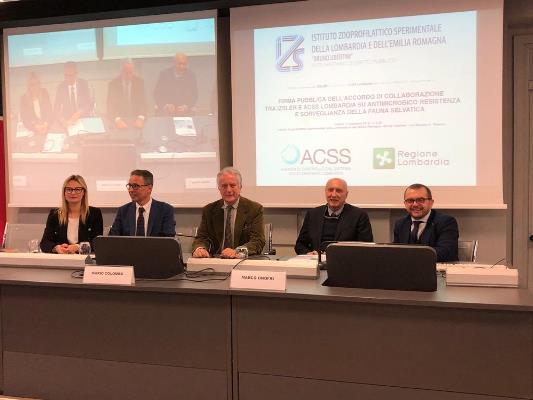 Sorveglianza fauna selvatica e antibioticoresistenza, accordo tra Izsler e Acss