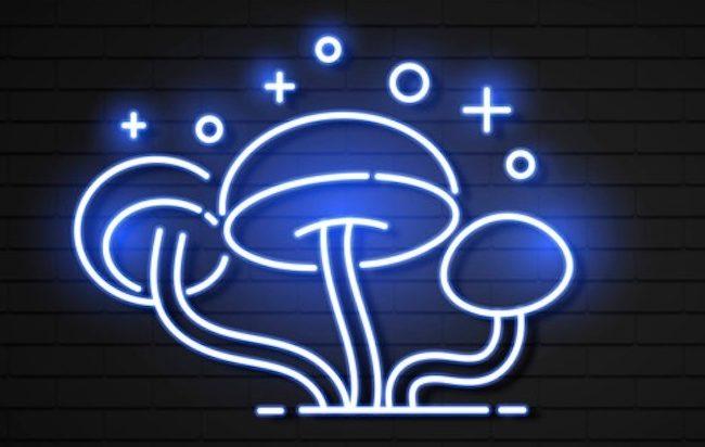 """Depressione, la sostanza attiva dei """"funghetti magici"""" supera il primo trial"""