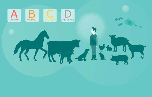 Antibiotici, Ema ai veterinari: usate la nostra scala di priorità