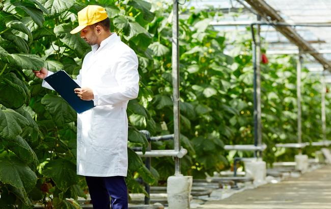 Ecco le 95 startup che reinventano l'agroalimentare