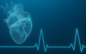 modello matematico cuore