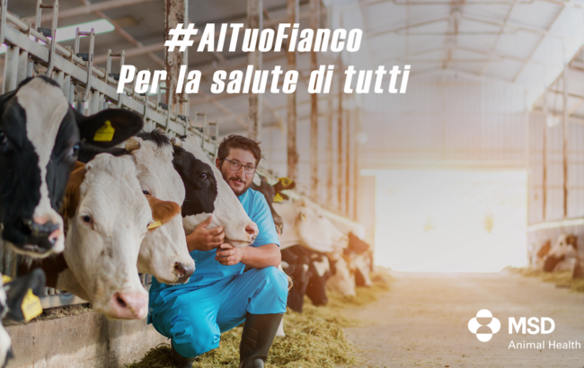 Msd Animal Health, continua la campagna #altuofianco: iniziative per veterinari e consumatori
