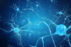 Disturbi psichiatrici, nuova collaborazione tra Takeda e Neurocrine Biosciences