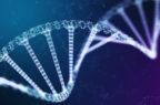 Emofilia, positivi i primi dati della terapia genica di Pfizer e Sangamo