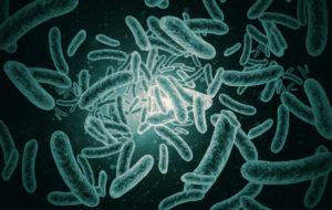 microbioma tumori