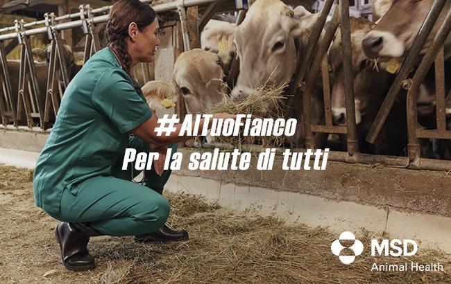Informazione, zootecnia, lotta all'abbandono: continua la campagna #AlTuoFianco