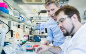 nanomateriali sistema immunitario