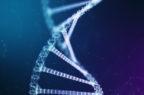 Malattie autoimmuni, scoperti nuovi bersagli per curarle