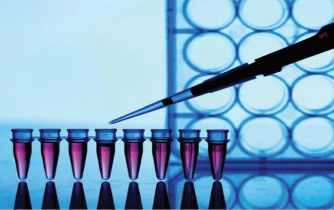 Mieloma multiplo, grazie ai farmaci innovativi si allunga la sopravvivenza dei pazienti