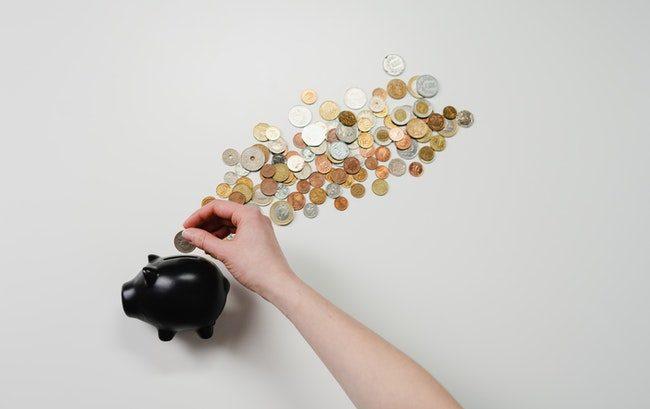 """Solo 9 miliardi del Recovery Fund alla sanità? Per i veterinari Ssn è """"sconcertante"""""""