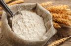 Cibo proveniente da insetti, ok di Efsa ad alimenti a base di vermi della farina