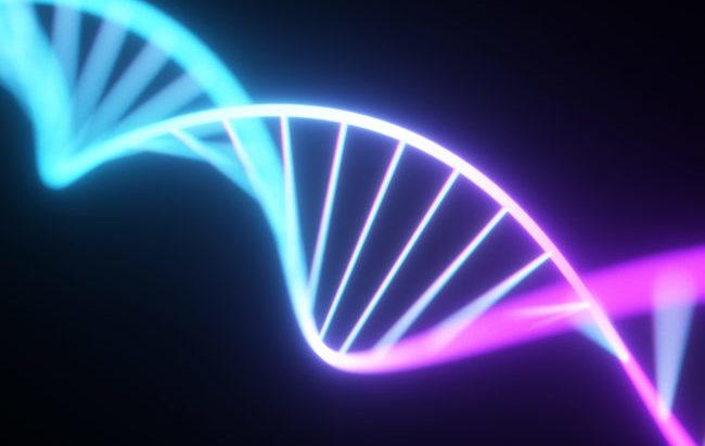 Editing genetico, possibile applicazione clinica per la sindrome da Iper IgM